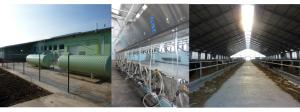 Modernizácia farmy dojníc Žiar
